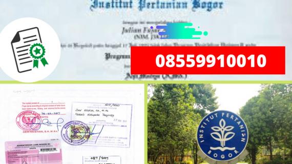Jasa Legalisir Ijazah Institut Pertanian Bogor Di Kemenristek Dikti || 08559910010