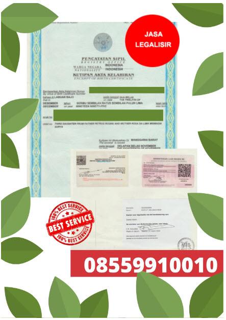 Jasa Legalisir Di Kedutaan Belanda || 08559910010