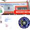 Jasa Legalisir Ijazah Universitas Muhammadiyah Sumatera Utara Di Kemenristek Dikti || 08559910010