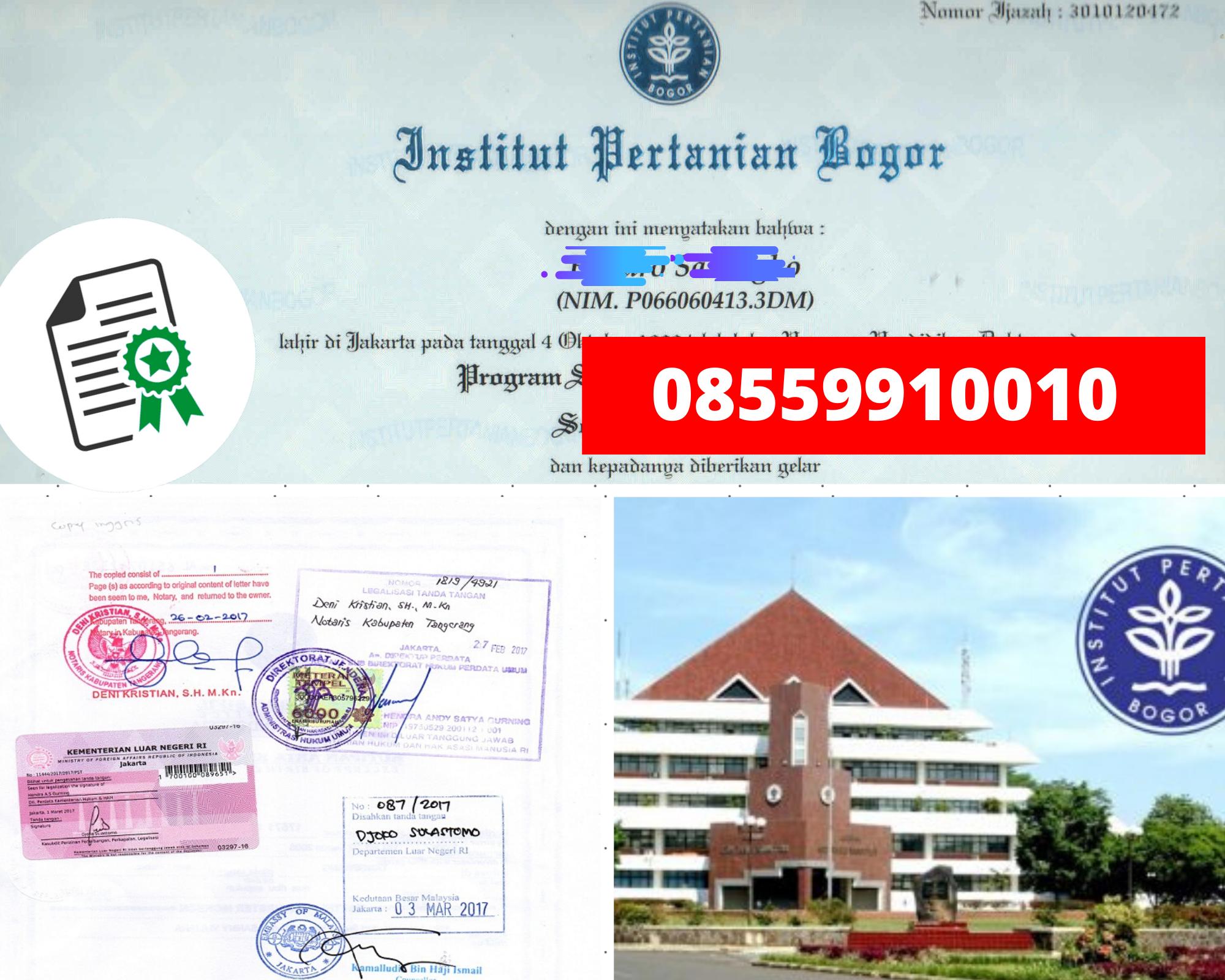 Legalisir Ijazah Institut Pertanian Bogor   Di Kemenristek Dikti || 08559910010