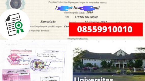 Jasa Legalisir Ijazah Universitas Diponegoro Di Kemenristek Dikti || 08559910010