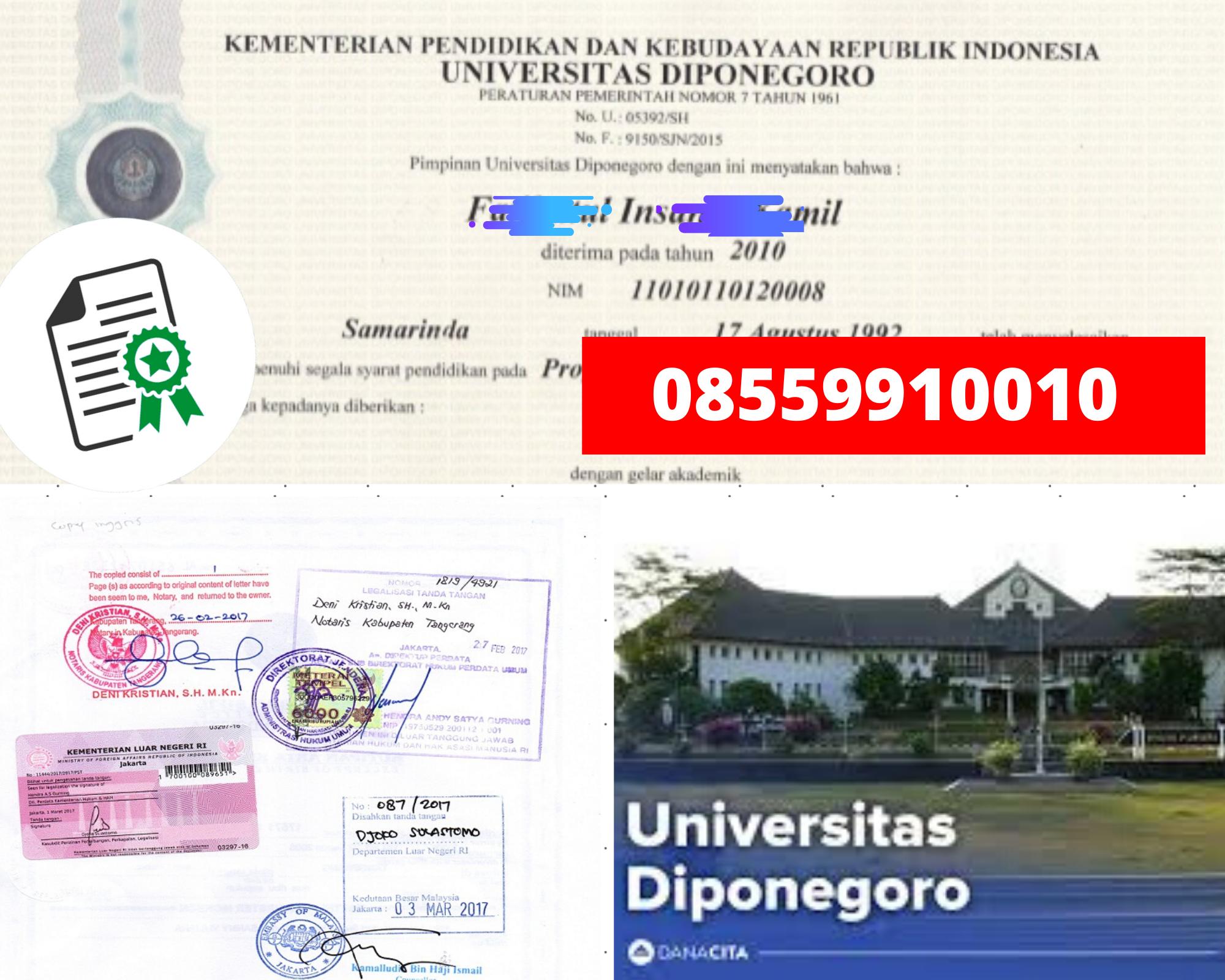 Legalisir Ijazah Universitas Diponegoro Di Kemenristek Dikti || 08559910010