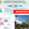 Jasa Legalisir Ijazah Universitas Negeri Makassar Di Kemenristek Dikti || 08559910010
