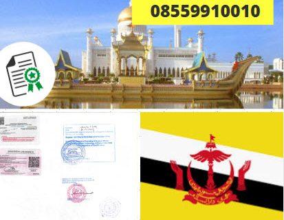 Jasa Legalisir KEMENKUMHAM di Brunei || 08559910010