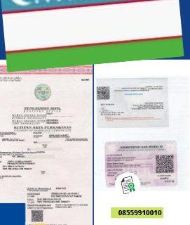 Jasa Legalisir Akta Pernikahan Di Kedutaan Uzbekistan || 08559910010