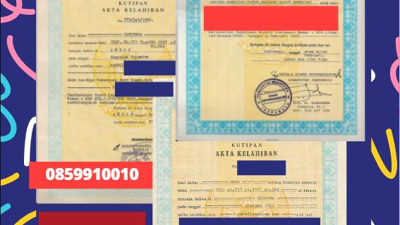 Jasa Legalisir Akta Lahir Indonesia di Holandia Selatan – Belanda || 08559910010