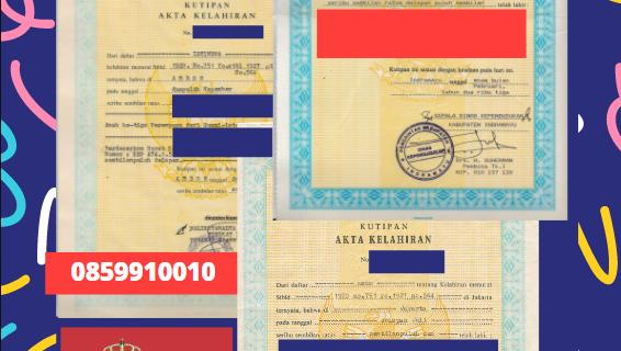 Jasa Legalisir Akta Lahir Indonesia Di Bačka Selatan – Serbia || 08559910010