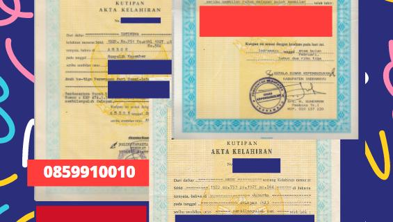 Jasa Legalisir Akta Lahir Indonesia Di Al Anbar – Irak || 08559910010