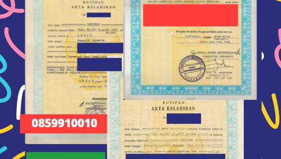 Jasa Legalisir Akta Lahir Indonesia Di Ardabil – Iran || 08559910010