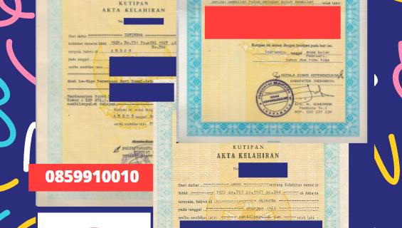 Jasa Legalisir Akta Lahir Indonesia Di Gunma – Jepang    08559910010