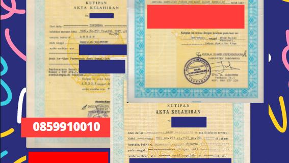 Jasa Legalisir Akta Lahir Indonesia Di Maluku – Indonesia || 08559910010